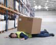 Гигиена и безопасность труда